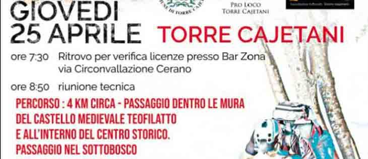 Consulenza Campagna SEO Sant'Angelo Romano