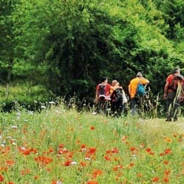 A piedi nella natura: i 40 percorsi del Parco dei Monti Simbruini