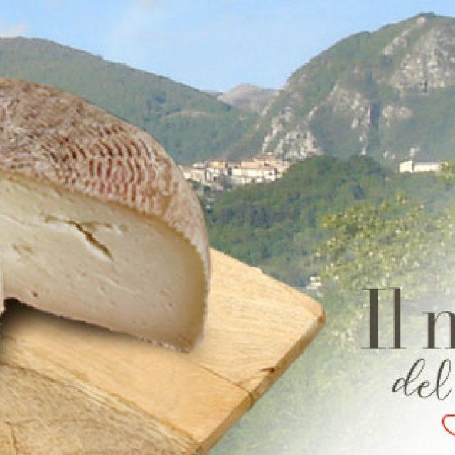 Formaggi DOP del Lazio. Oggi presentiamo il pecorino di Picinisco