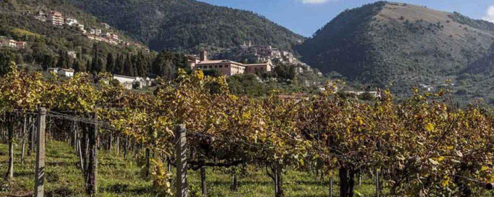 Piglio, il cantico del vino