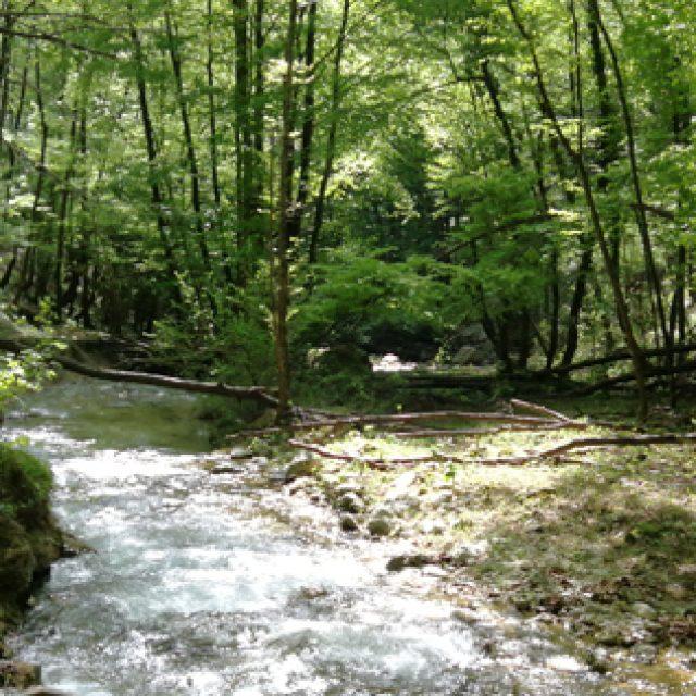 I cammini della Certosa: il sentiero della Valle dei Santi