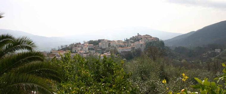 Sant'Andrea del Garigliano