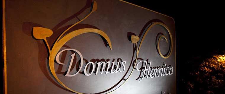 Domus Hernica Header