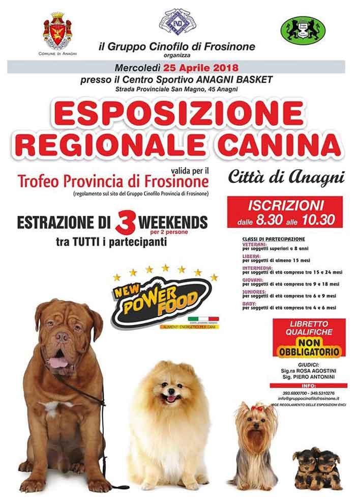 Esposizione Canina Anagni Trofeo Provincia Frosinone