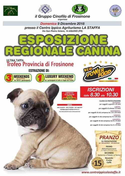 Esposizione Regionale Canina